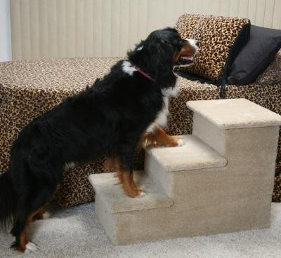 Carpeted Steps for Large Breed Dogs